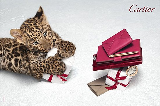 cartier winter tale 1